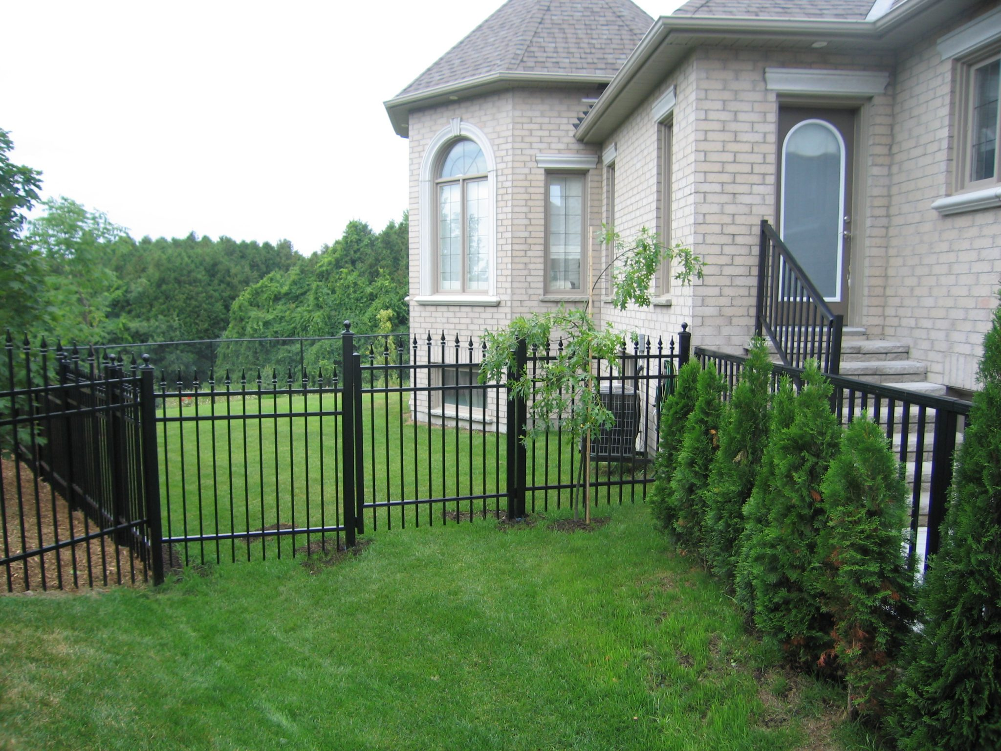 Back yard fencing with gate.