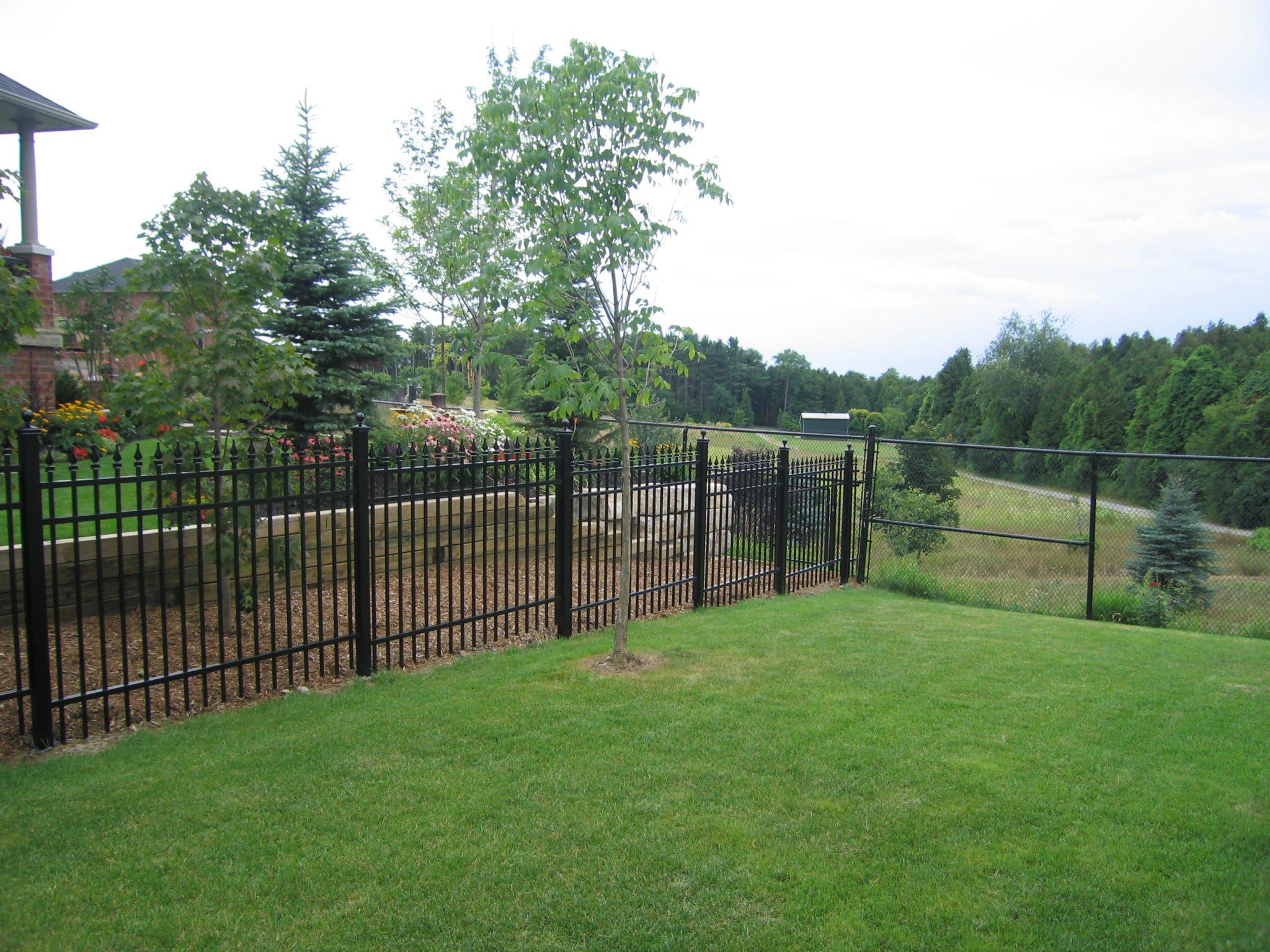 Back yard picket fence