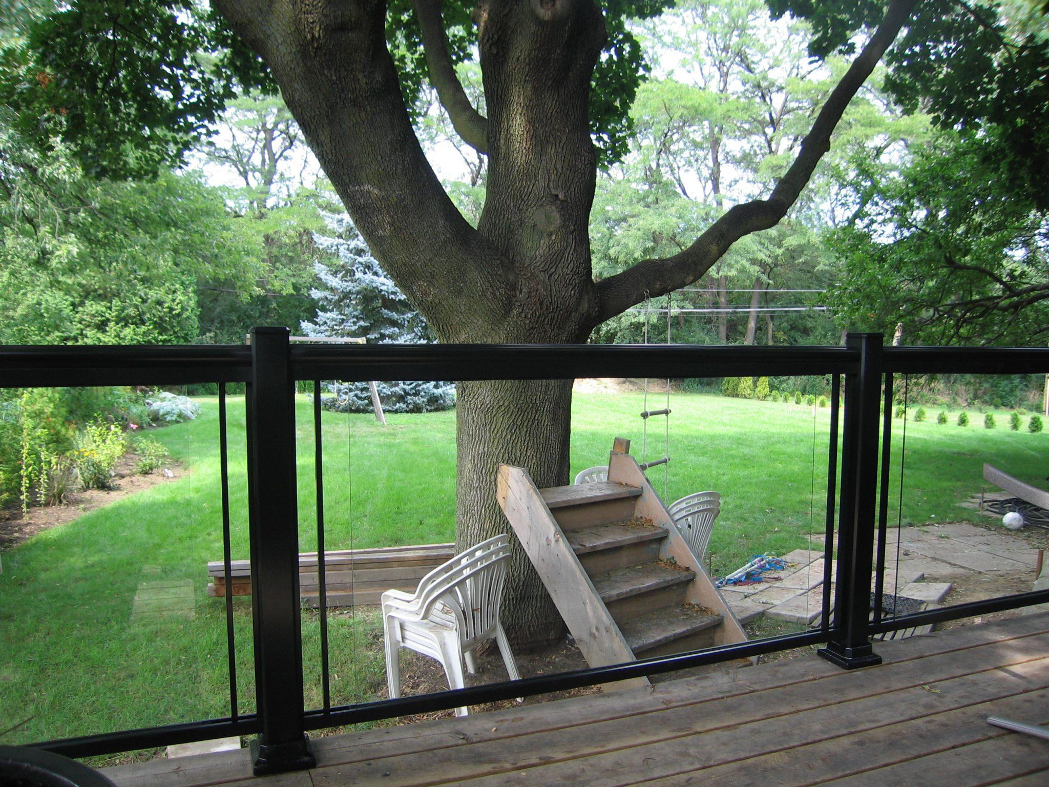Backyard with large tree